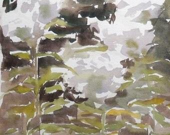 "White Flowers -Watercolor Nature Painting 10x14"" Original Artwork, landscape art, impressionist"