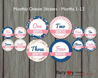 Monthly Onesie Stickers, Monthly Milestone Stickers, Shabby Chic, Digital File, DIY, Baby Shower Gift, Design 003