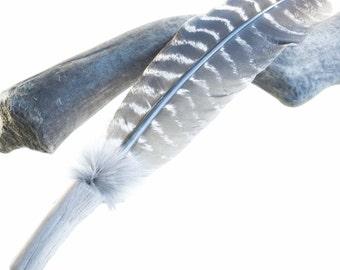 Turkey Feather Smudge Fan