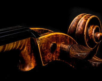 Cello Photography, Music, Instrument, Scroll