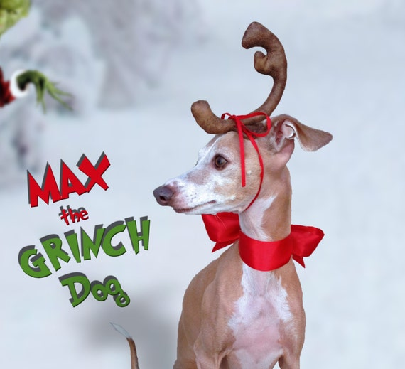 Max the Grinch Dog head antler for Christmas pets dog or ...