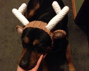 PATTERN: Reindeer hat for Dogs! (Crochet)