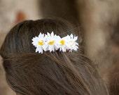 Daniella - Petite Daisy Comb.