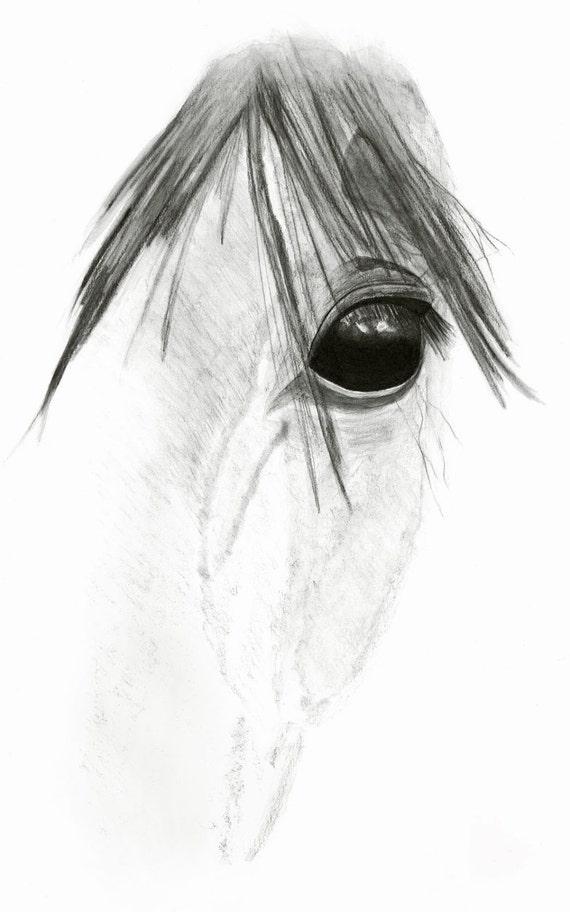 Cheval art print oeil de cheval dessin au crayon 8 x - Cheval a imprimer noir et blanc ...
