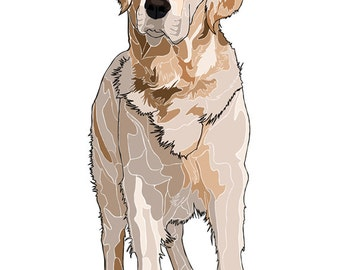 D006: Golden Retriever