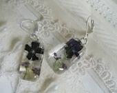 Blue Verbena, Purple Alyssum Pressed Flower Glass Rectangle Leverback Earrings-Gifts Undner 25-Symbolizes Enchantment, Worth Beyond Beauty