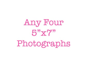discounted 5x7 photography set four photographs affordable nursery art wall art for kids