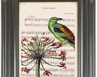 Green bird Amaryllis flower COUPON Dictionary art print Wall hanging art Sheet music page Digital art print Home decor. Item No 379