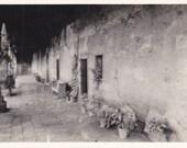 Mission San Juan Capistrano- California- Souvenir View- 1940s Vintage Photograph- Old Photo Postcard- RPPC