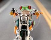 Motorcycle, Harley, LIVE Frog Motorcycling, Harley Davidson. Miniature motorcycle,