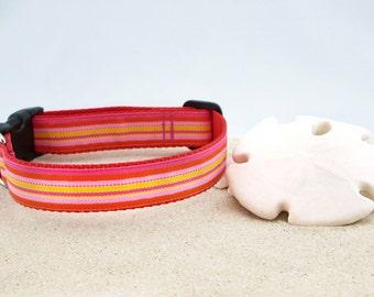 "Coral, Pink, Orange Stripe Spring Summer Dog Collar, 1"" Wide"