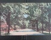 West Nash Street, Wilson, North Carolina, Vintage Postcard