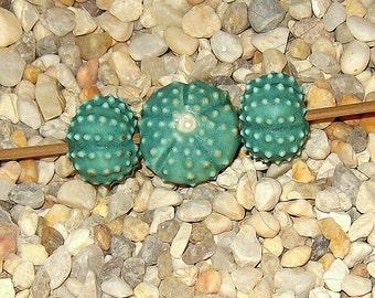3 bead set in matte turquoise  blue handmade sea urchin bead porcelain ceramic jewelry or fiber art supply big bold chunky beads