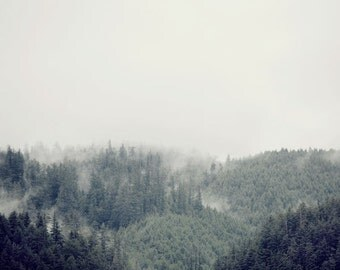 "Mountain Photography, Forest Trees in Fog Nature Art Print, Landscape Photography, Large Wall Art Tree Print, Gray ""Distant Dreams"""
