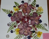 Real Dried and Pressed Flowers 60+ with ferns Ready to Ship