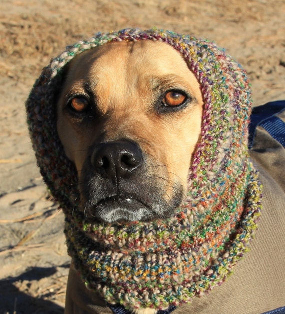 Knitting Pattern Dog Snood : Hand knitted Snood for Dog Medium Dog Multi color stripes