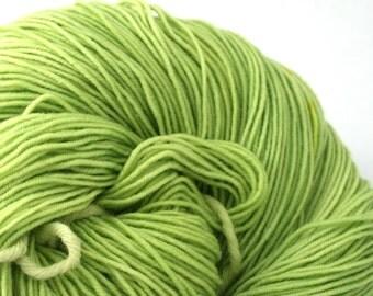 Esopus Hand Painted 100% SW Merino 500yds 4oz Lemongrass