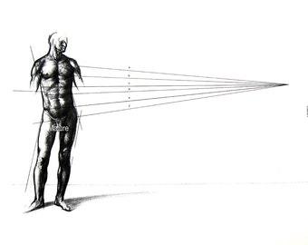 The Male Figure - A Sketch 2 - 1975 Vintage Anatomy Print -  12 x 9