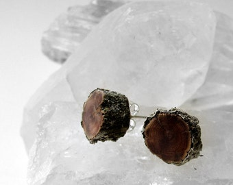 In the Land of Ice and Snow - Exquisite Cedar Lichen Bark Twig Wooden Stud Earrings by Tanja Sova