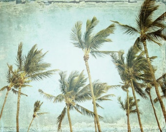 "Tropical wall art palm tree print pale aqua green decor Maui Hawaii beach palm trees ""The Only Sound"""