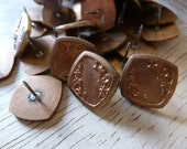 6 VINTAGE  Raw Brass Nouveau Stamped Earring Posts C2