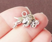 6 Buffalo Charms (Double sided,puffed,solid) 18x16mm