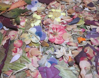 Dried Pressed Flowers for Crafting - Flower and Greenery Confetti