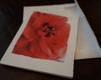 "Tree Free Blank Card - ""Red Flower"""