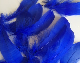 VOGUE GOOSE NAGOIRE Loose Feathers , Cobalt  Blue / 291