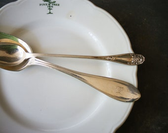 Vintage Hotel Silver | Silverplated Serving Spoon | Chicago Illinois | Iced Tea Spoon with Grape Handle | Edgewater Beach