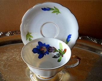 Vintage Seltmann Weiden Bavaria West Germany Teacup & Saucer Set