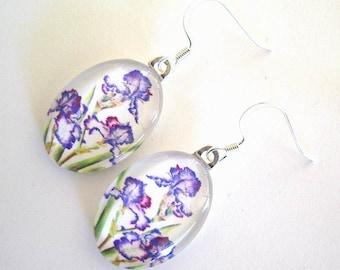 Purple Edged White Iris Jewelry Earrings Flower Garden Art