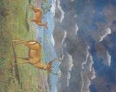 Vintage English picture of deer luminous