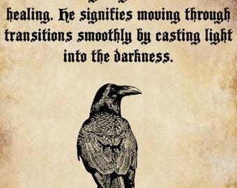 Raven Spirit Animal Meaning