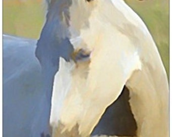 Horse 4 X 6 Post Cards With Envelopes