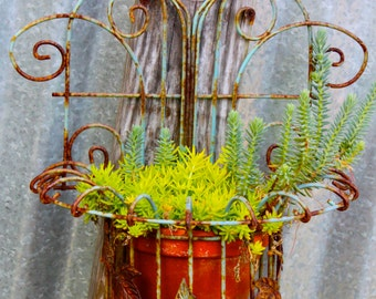Rusted Red Potted Greenery, Fine Art Photography Print by Shelly Heck,