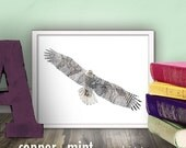 Bald Eagle Abstract Illustration Printable wall art 8x10 decor vintage silhouette drawing nature enthusiast endangered wall decor CM2101