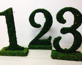 Moss 12 inch table numbers