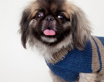 Wool grey and blue dog sweater // Chandail de laine pour chien bleu & gris