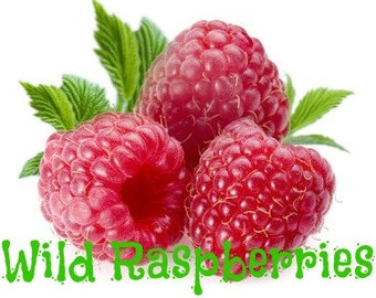 wild raspberries scented soy wax melts fresh fruit scent wickless ...