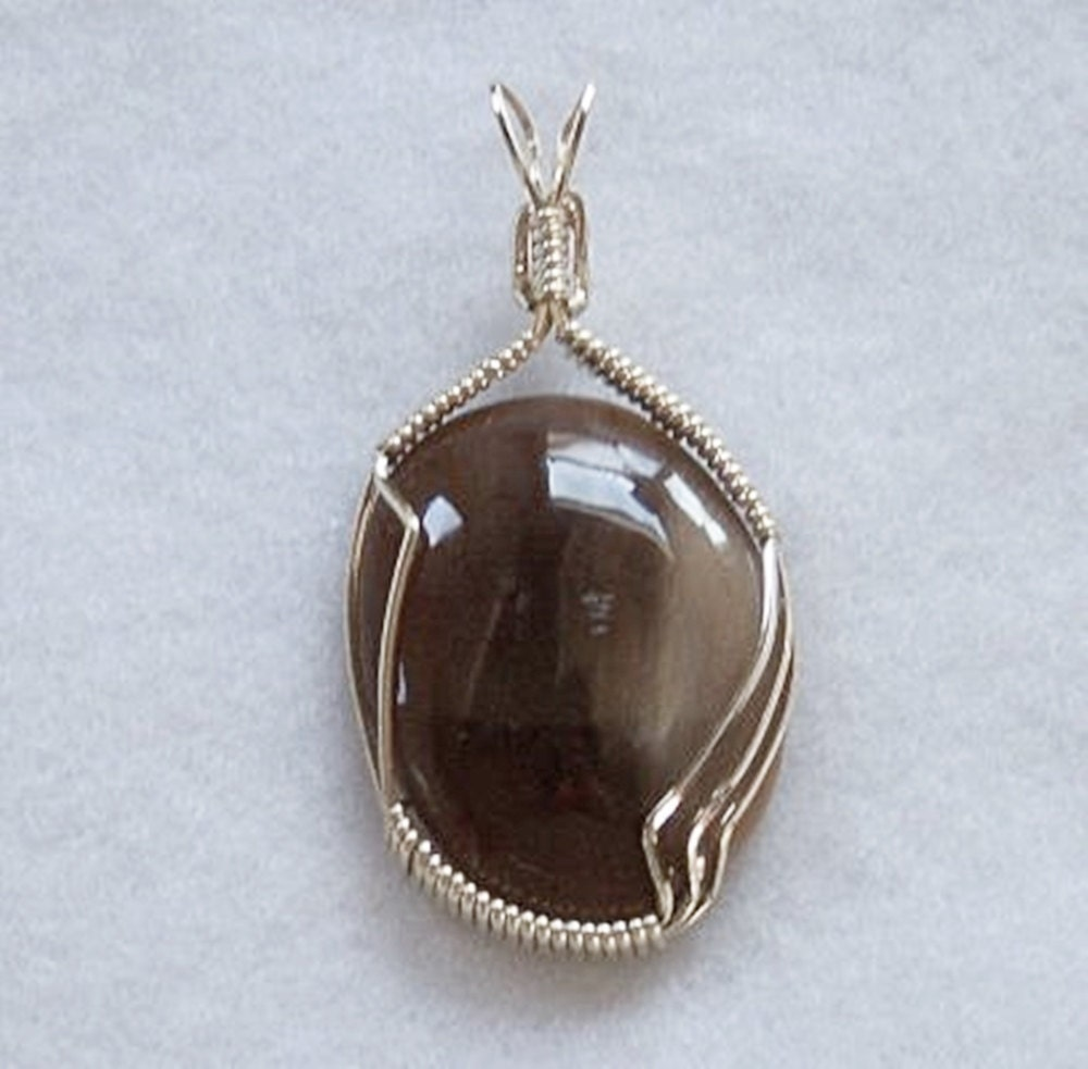 wire wrapped pendant handmade petrified wood by