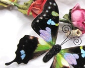 Butterfly Embellishments Audrey
