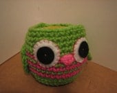 Crochet  Apple Cozy  -Great Teachers gift - Lime green or  Hot pink - Valentine's Day