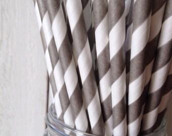 25 Silver Shimmer Striped Paper Straws Aardvark