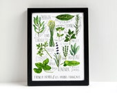 French Herbs Watercolor Print