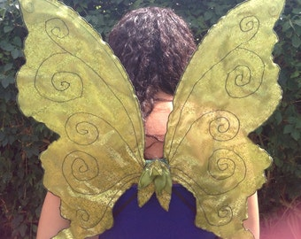 Green/gold adult butterfly wings