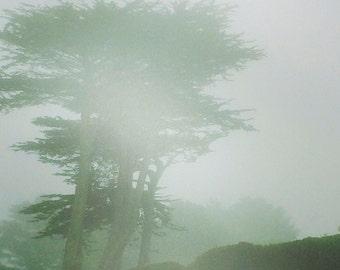 fog...mendocino, ca. - digital print