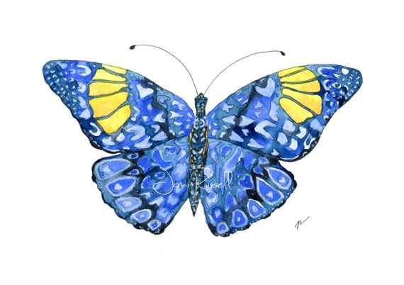 Indigo Butterfly, digital download