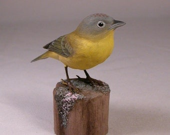 Nashville Warbler  Bird Carving Wood