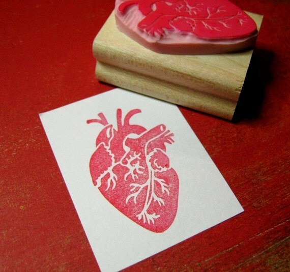 Heart Stamp - Anatomical Heart - Hand carved rubber stamp by Skull and Cross Buns